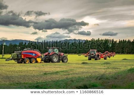трактора области сено грабли фермы Сток-фото © enterlinedesign