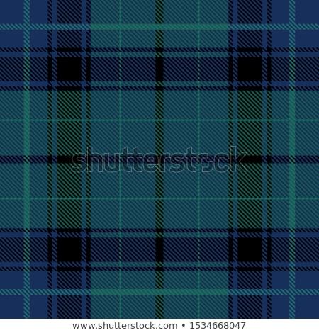 Blue and green plaid tartan seamless pattern background Stock photo © sanjanovakovic