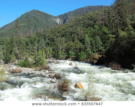 river rapid in springtime Stock photo © PixelsAway