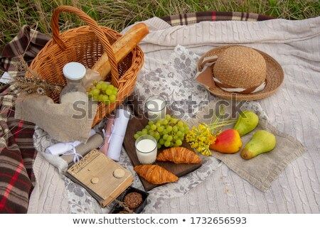 flowers in a wicker basket cookies book stock photo © manera
