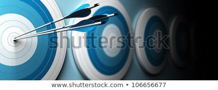 Coaching - Arrows Hit in Target. Stock photo © tashatuvango