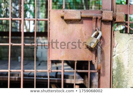 Steel cage door was locked with a key Stock photo © Yongkiet
