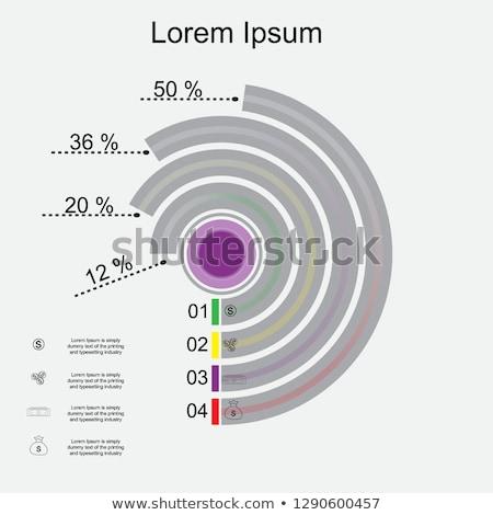 Idővonal infografika terv elemek brossúrák adat Stock fotó © DavidArts