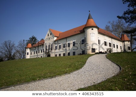 Luznica castle Stock photo © gsermek