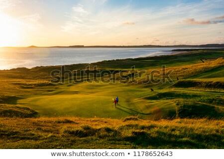 kilátás · linkek · golfpálya · égbolt · nyár · mező - stock fotó © hofmeester