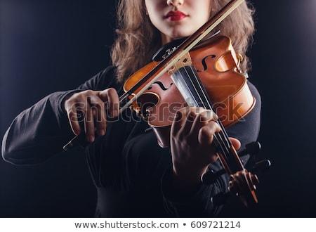 gyönyörű · fiatal · hölgy · játék · hegedű · boldog - stock fotó © aikon