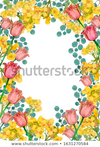 Frame of Spring Tulips Stock photo © zhekos