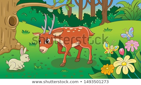 Deers and rabbits in the jungle Stock photo © bluering