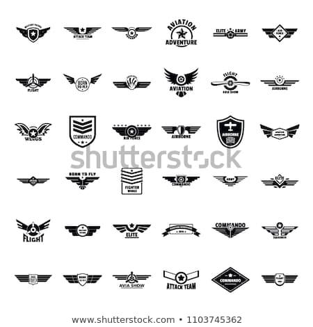 Logo ikon csíkos pajzs terv forma Stock fotó © cidepix