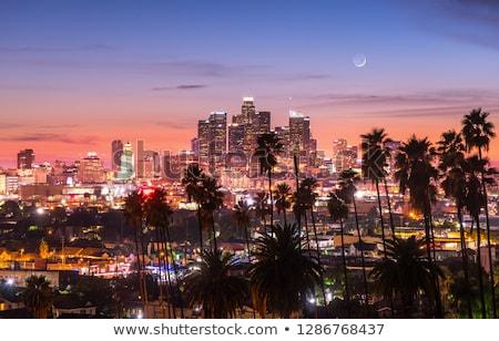 Linha do horizonte Los Angeles noite ver edifícios arranha-céu Foto stock © meinzahn