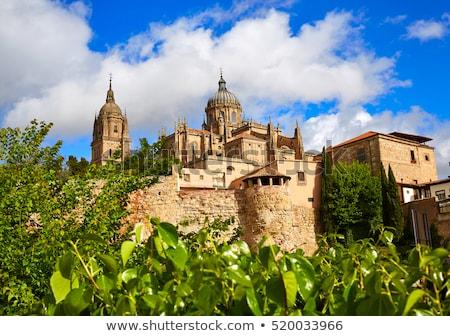 Katedral İspanya yol Bina şehir Stok fotoğraf © lunamarina