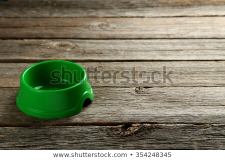 Green pet bowl empty Stock photo © backyardproductions