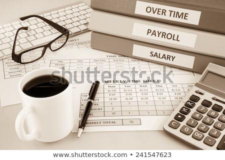 Salaries on Office Binder. Toned Image. Stock photo © tashatuvango