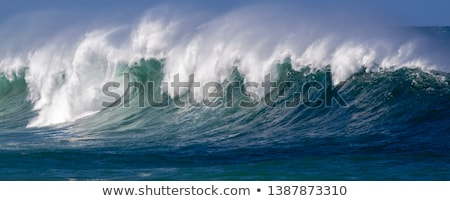 Waves breaking on beach, Hawaii, USA Stock photo © IS2