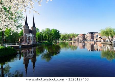 Kapu Hollandia kilátás ikonikus történelmi Hollandia Stock fotó © neirfy