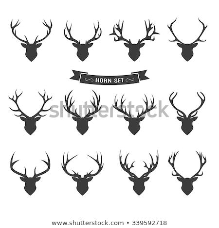 鹿 頭 シルエット トナカイ セット ストックフォト © Terriana