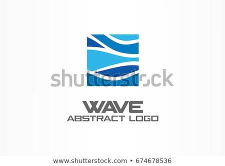 Stock fotó: Természetes · bio · vektor · ikon · hullám · logoterv
