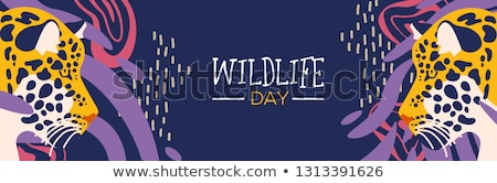 Wildlife day web banner of leopard in jungle Stock photo © cienpies
