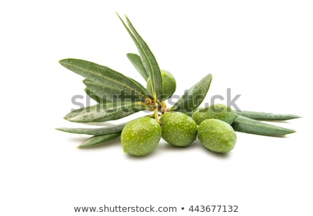 Branch Olives With Leaf Isolated Transparent Background Stock photo © adamson
