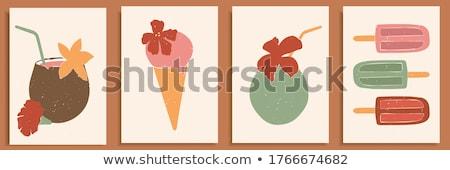 кокосового фрукты минимальный стиль Top мнение Сток-фото © neirfy