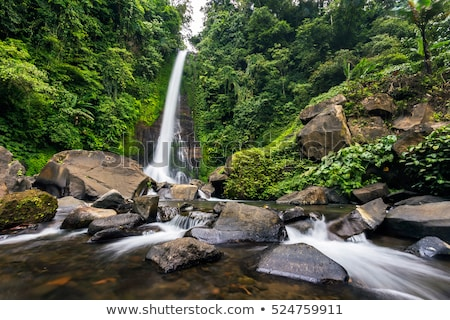 Cachoeira bali ilha Indonésia ver água Foto stock © boggy