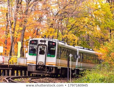 Piros vonat ingázó Japán ősz ősz Stock fotó © vichie81