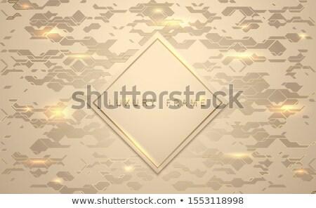 Ouro luxo bandeira dourado membro quadro Foto stock © Iaroslava