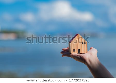 home insurance concept Stock photo © vichie81