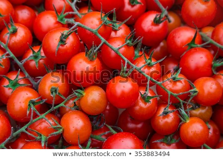 Twee roma kerstomaatjes Rood witte voedsel Stockfoto © mybaitshop
