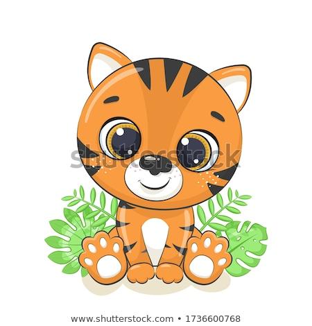 Bonitinho bebê tigre criador projeto arte Foto stock © indiwarm