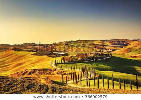Crete Senesi Stock photo © wjarek