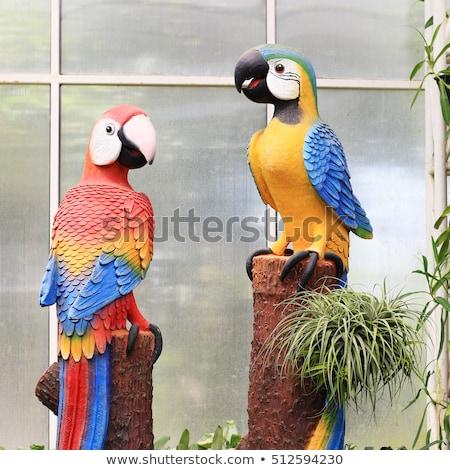 Parrot statue  stock photo © oneinamillion