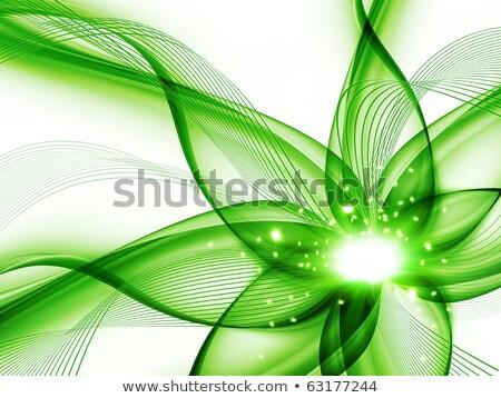 Abstrato verde enrolado ilustração vetor Foto stock © derocz