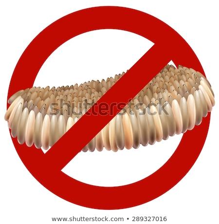 szúnyog · tojások · közelkép · textúra · orvosi · természet - stock fotó © smuay