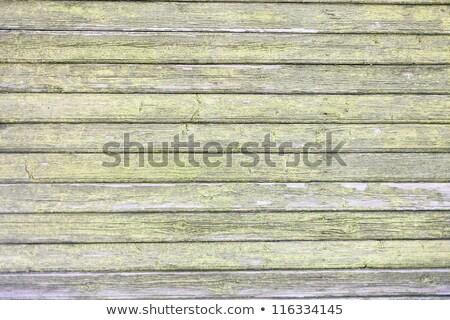 bois · texture · fissuré · peinture · résumé · bois - photo stock © latent