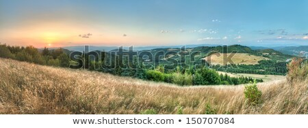 landscape, view from Paradajs towards Vtacnik mountain Stock photo © Kayco