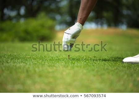 hand placing a tee with golf ball stock photo © mikdam