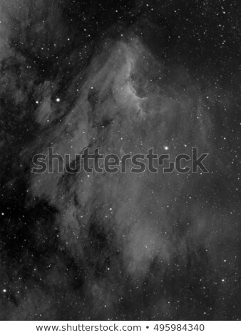 IC5070 Pelican Nebula Stock photo © rwittich