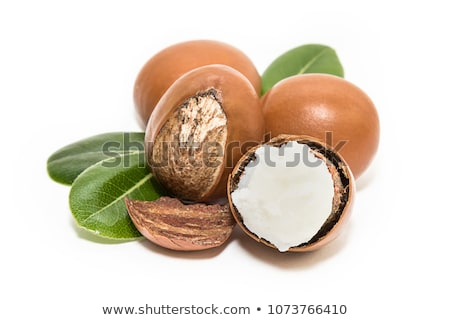 shea butter and nuts stock photo © Luisapuccini