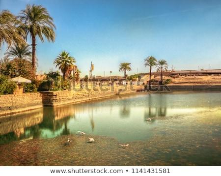 Gündoğumu tapınak luxor Mısır taş mimari Stok fotoğraf © eleaner