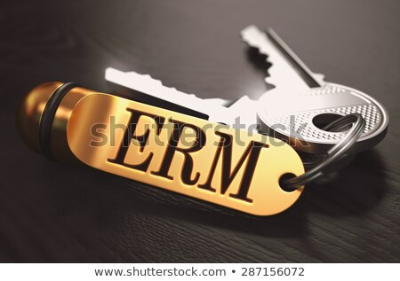 ERM - Bunch of Keys with Text on Golden Keychain. Stock photo © tashatuvango