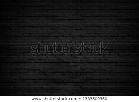 Background from a black wall Stock photo © elxeneize