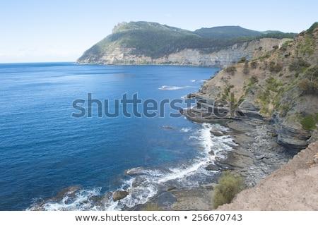 Wyspa stromy Urwisko wybrzeża górskich wysoki Zdjęcia stock © roboriginal