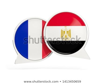 Франция Египет флагами вектора изображение головоломки Сток-фото © Istanbul2009