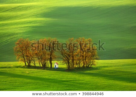 Amazing landscape in Moravia Stock photo © CaptureLight