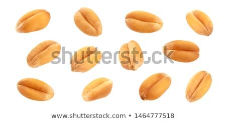 Volkoren voedsel natuur tarwe Stockfoto © shutswis