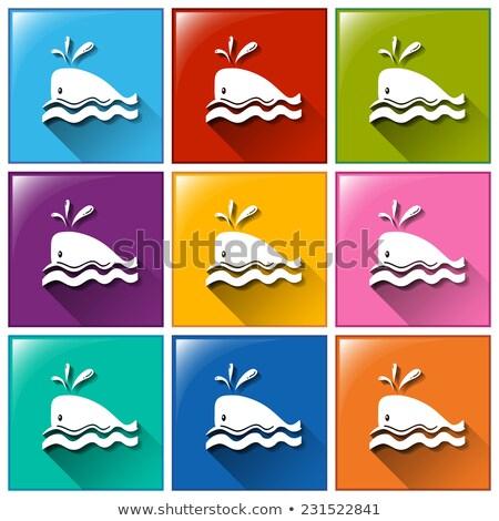 розовый · кит · белый · иллюстрация · искусства · тропические - Сток-фото © bluering