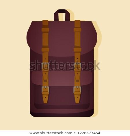 kettő · öreg · bőrönd · izolált · fehér · retro - stock fotó © smuki