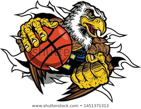 Orzeł koszykówki sportowe maskotka zły zwierząt Zdjęcia stock © Krisdog