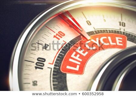 life cycle   text on conceptual gauge with red needle 3d stock photo © tashatuvango